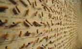 Il Museo dell'Innocenza di Orhan Pamuk